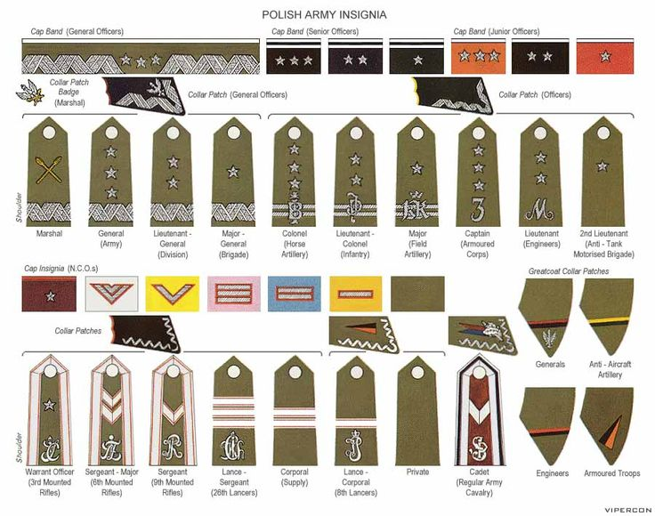 Polish Army Insignia- using this shade of earthy green shows that, nowadays, these rankings are army based. there is a slight difference in these rankings as they have a folded like cap band, different symbols on the collar patches and more use earthy oranges and reds, these small things are what define this country's Army Insignia.
