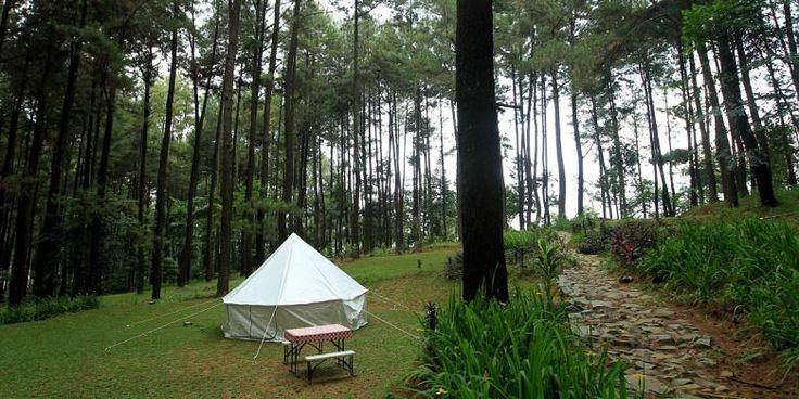 Camping Ground at Mount Pancar