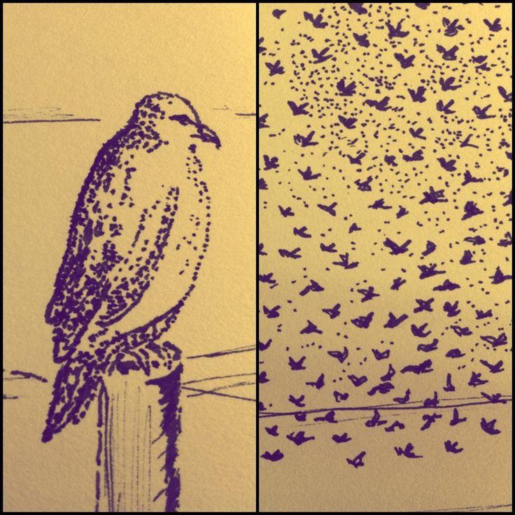 bird drawing - vive la viep