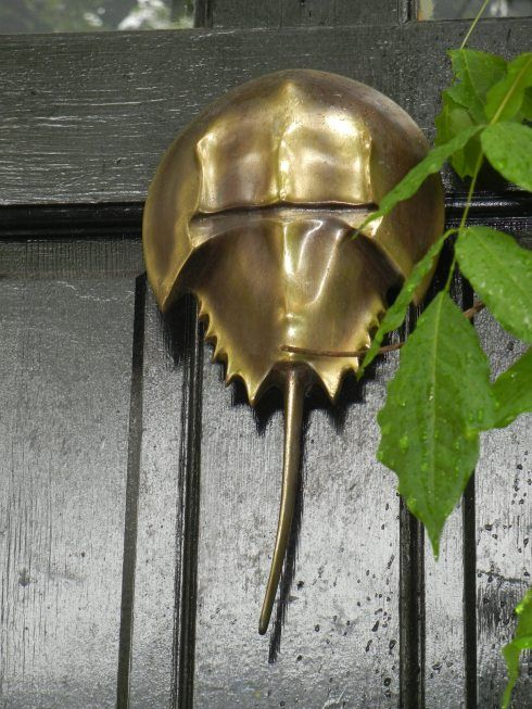 Horseshoe Crab Door Knocker