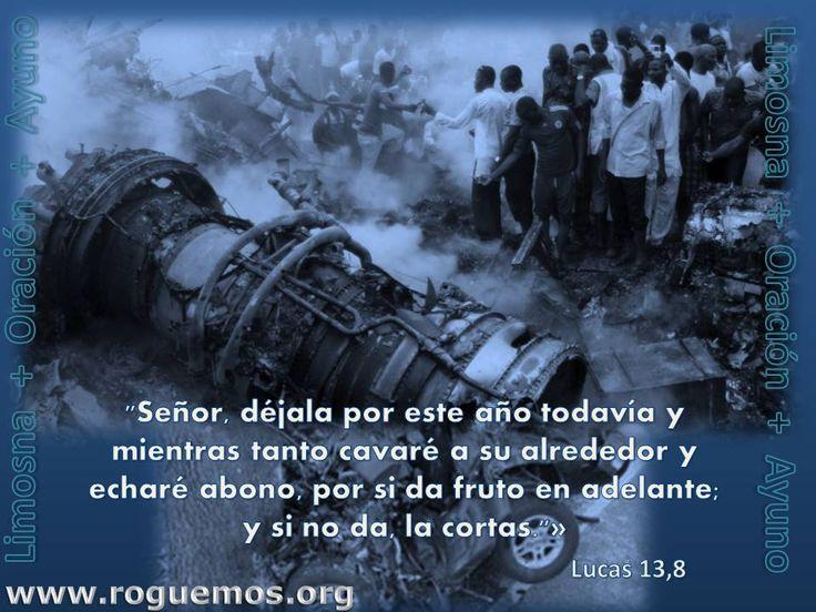 Lucas 13,1-9 – déjala por este año todavía - Roguemos al Señor