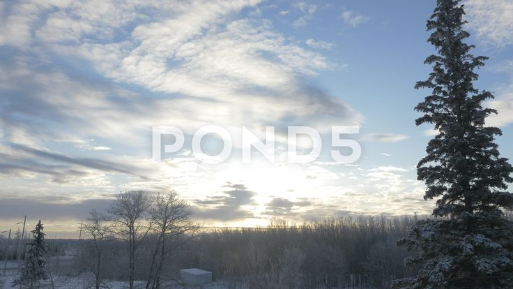 4k Time Lapse Sun Winter Sky Grey Clouds Fir Tree Sunlight Lens Flare - Stock Footage | by RyanJonesFilms