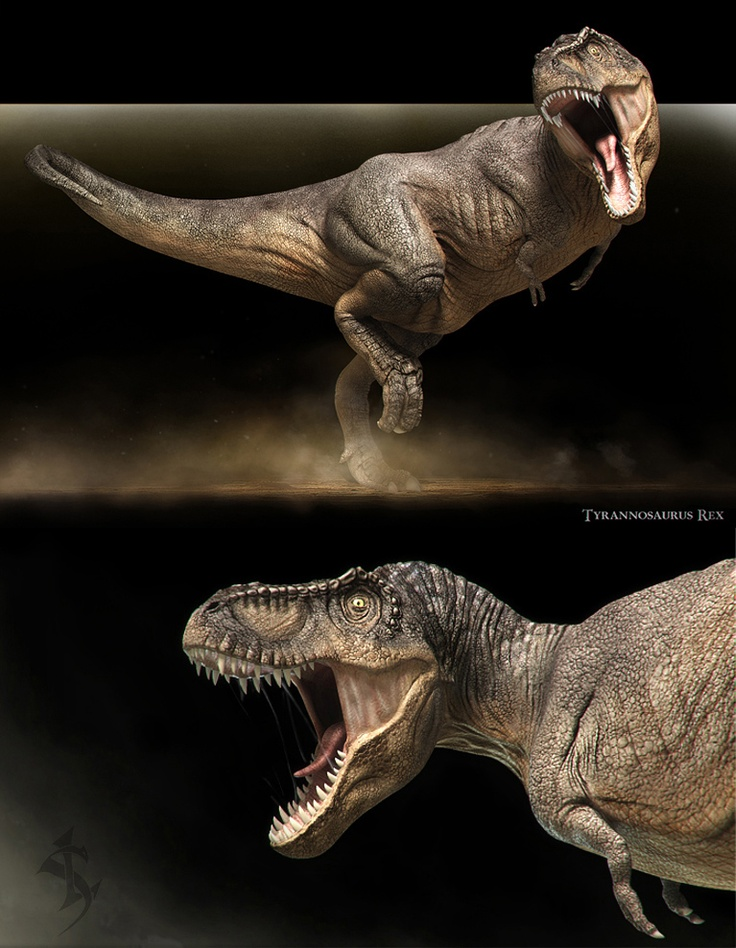 Tyrannosaurus rex_variant 2 by ~Swordlord3d on deviantART. Gorgeous texture and form!