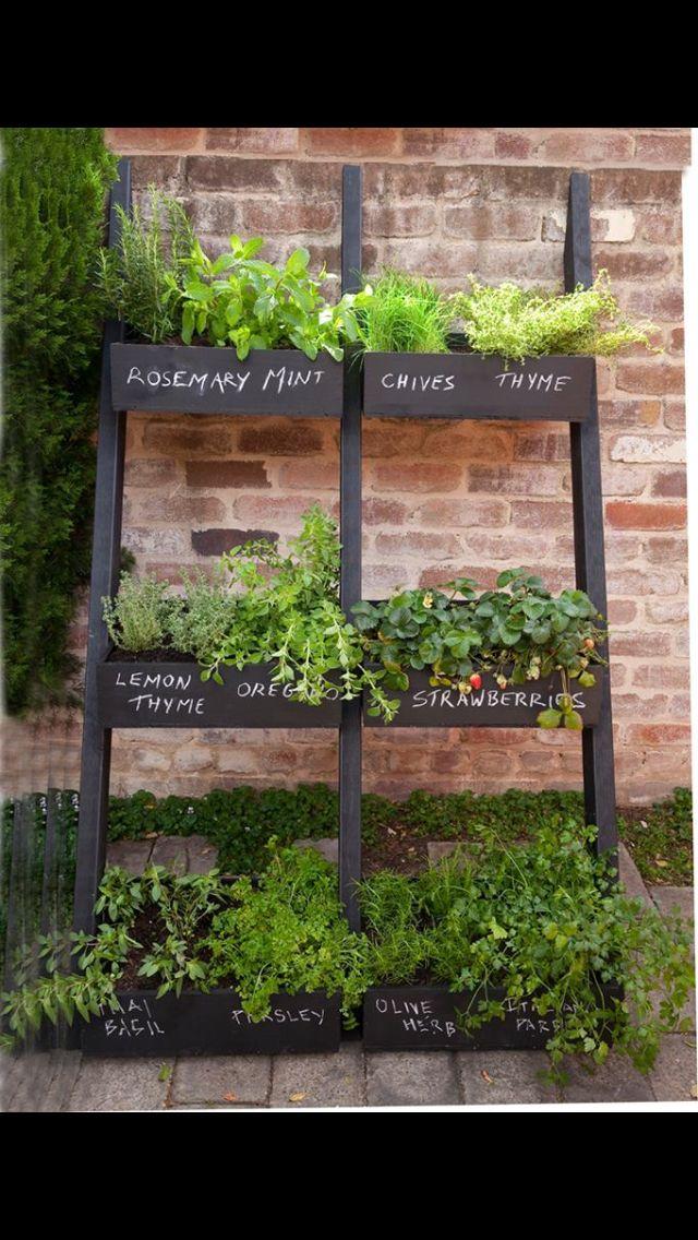 Easy care herb garden Home vegetable garden, Garden