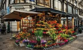 Florist Shops,  http://forums.webtoolhub.com/members/17534-uniqueflowershop  It aids to make certain that the delivery is done.