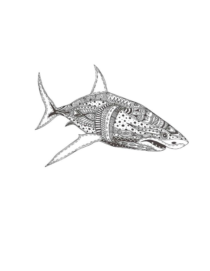 Great White Shark Coloring Page For Adults Shark Coloring Pages Beach Coloring Pages Coloring Pages