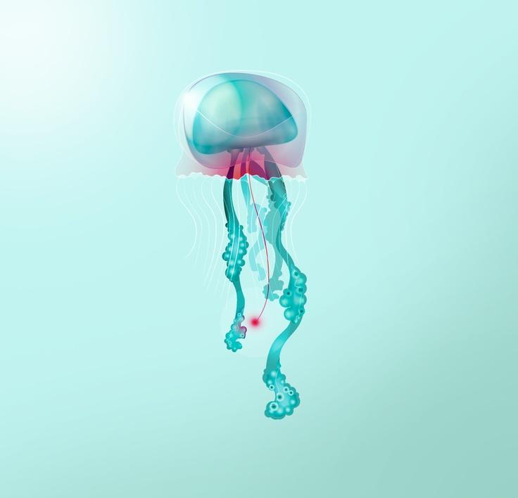 Character Design Challenge Facebook : Best creature design cephalopod images on pinterest