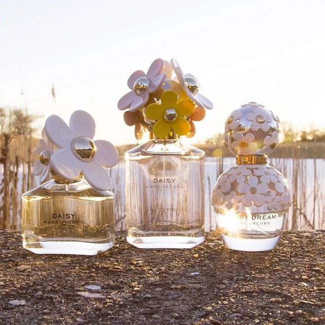 Marc Jacobs Daisy Trio