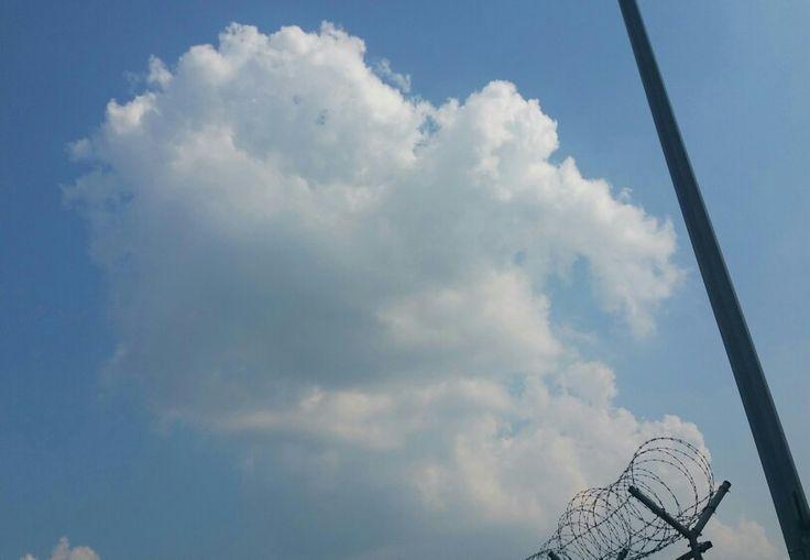 하늘은 기분이 좋았던 날