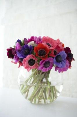 Anemones - don't know if they are an annual or perennial but they look like they'd fit in with my cottage garden.