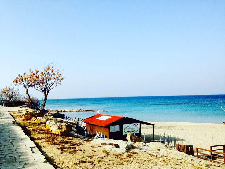 Słoneczny dzień na Cyprze/Sunny day in Cyprus ☀️🌴😍😎 #figtreebay #słońce #słonecznie #morze @wakacjenacyprze #wakacje #cypr #cyprus #zypern #kibris #kypros #サイプラス #cipru #kіпр #塞浦路斯 #kипър #chypre #ciprus #kύπρος #cypern #chipre #kипар #cipro #kipar #kyprou