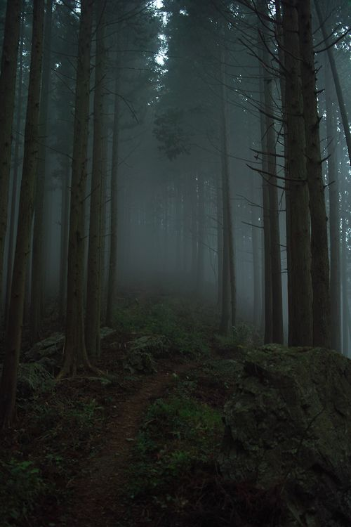 vurtual:  Okutama Mountains (by 8 og)