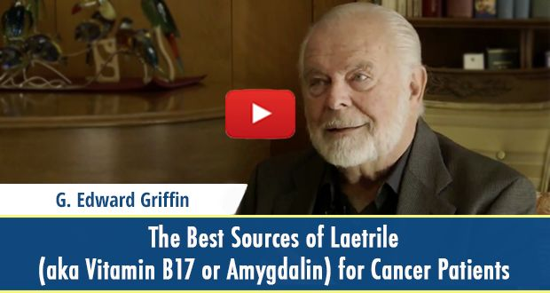 Do you know what are the best sources of Laetrile (aka Vitamin B17 or Amygdalin) for Cancer Patients?