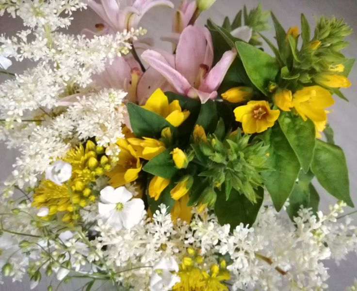 Kokoelma puutarhan kukkijoista elokuussa.