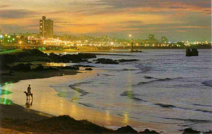 Port Elizabeth, South Africa! Unbelievable natural beauty!
