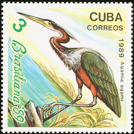 Agami Heron stamps - mainly images - gallery format
