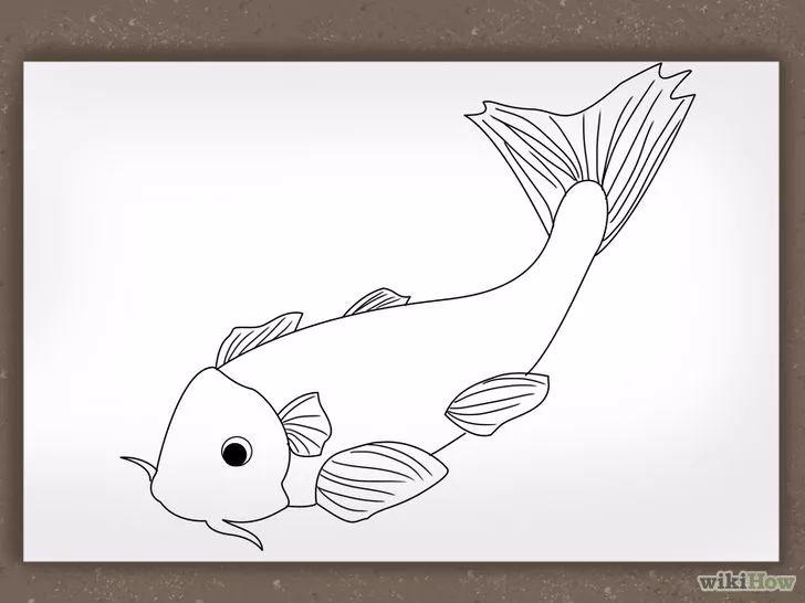 The 25 best Como dibujar un pez ideas on Pinterest  Como dibujar