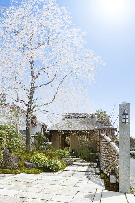 AIC秋津洲京都            Club House Wedding      photo pace & space 鈴木健太