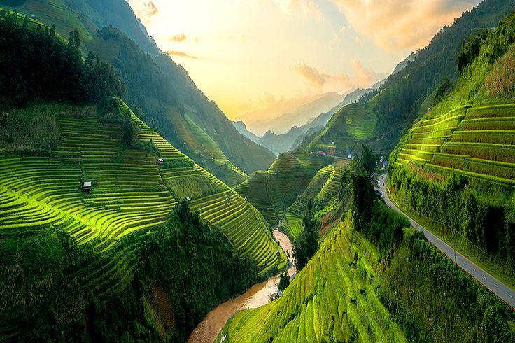 Terrasserade risfält i Mù Cang Chải #vietnam #risfält #mucangchai #travel #resa #semster