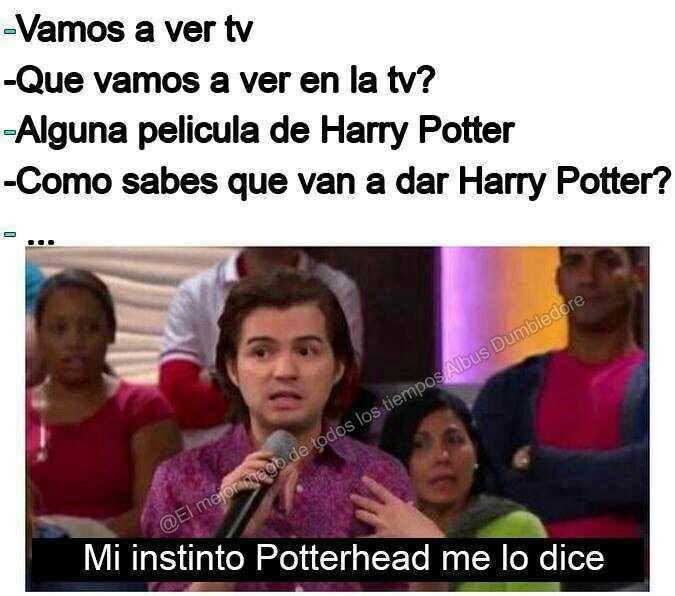 Los memes mas graciosos de Harry Potter (OJO: PROHIBIDO MUGGLES)  #45… #detodo…