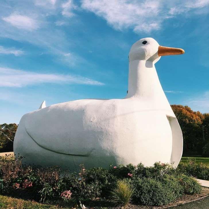The Big Duck in Flanders, New York