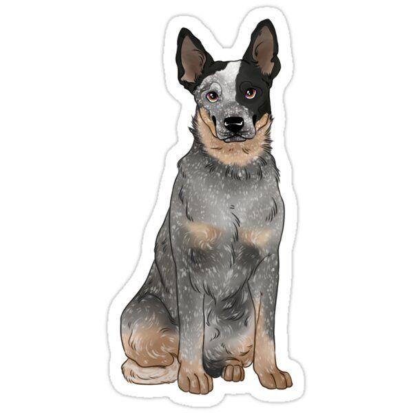 Blue Australian Cattle Dog Sticker By K Sea In 2020 Blue Heeler Puppies Heeler Puppies Blue Heeler Dogs