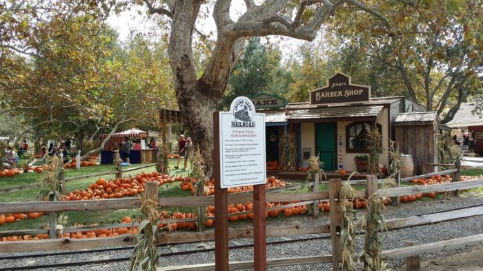 Although Irvine Park Railroad operates throughout the entire year, it's the fall season we can't resist as it passes through a festive pumpkin patch located in the most charming setting.