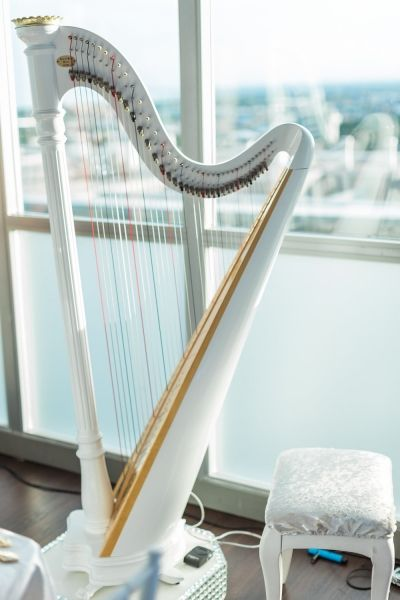 Colour coordinated harp