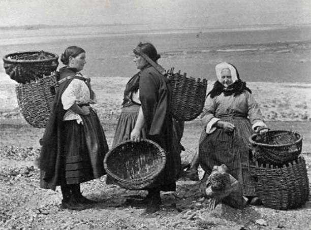 Old photograph of musselburgh fish wives baskets in for Old wife fish