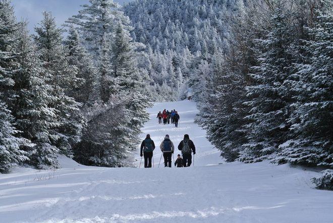 Randonnée hivernale dans les sentiers du Parc Environnement Naturel de Sutton (PENS)
