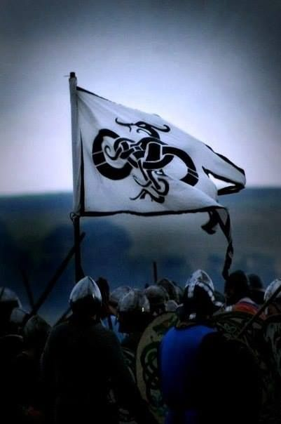 Viking flag, with the famous Gotland Beast on it... I love it... I want one!!!!