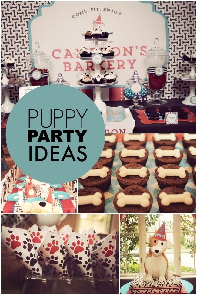 Puppy Themed Boy's Birthday Party www.spaceshipsandlaserbeams.com