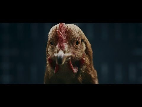 Mercedes-Benz Intelligent Drive 'Chicken' TV Advert