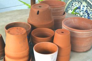 Gardening - Our community is scheduled for water conservation this summer. Drought!  Make a color spot in the yard that requires no irrigation.