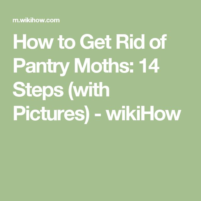 how to avoid pantry moths