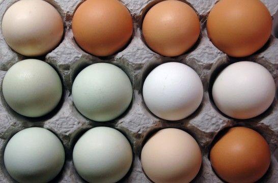 El tiempo de almacenamiento de huevos más seguro | EROSKI CONSUMER. Ampliar la fecha de consumo de los huevos de 28 a 35 días aumenta el riesgo de intoxicación alimentaria por Salmonella, según la EFSA