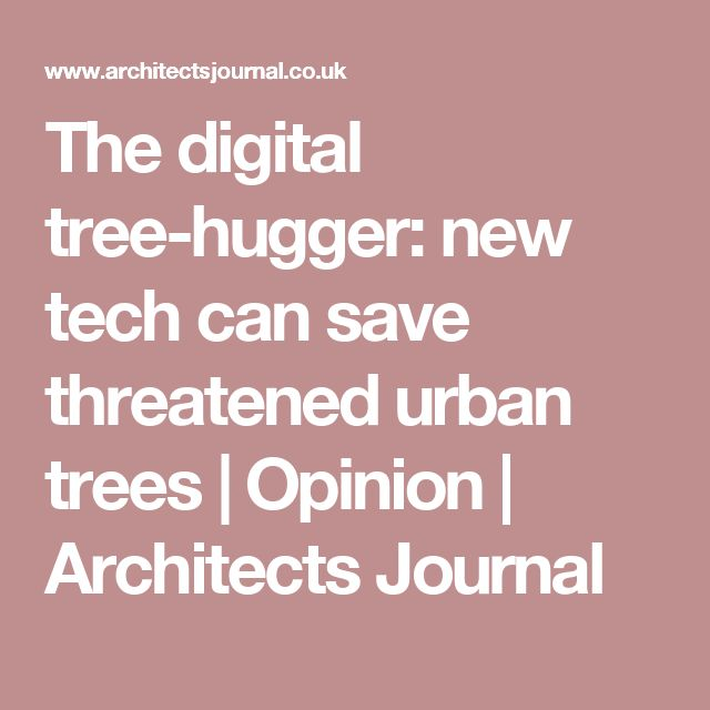The digital tree-hugger: new tech can save threatened urban trees | Opinion | Architects Journal