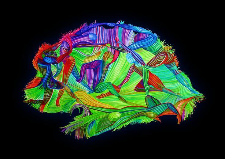 Sara Ambrosino, Emmanuela Ambrosino NICHE Neuroimaging Lab, Psychiatry Department, UMC Utrecht, The Netherlands