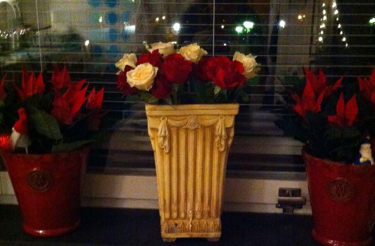Christmas window!