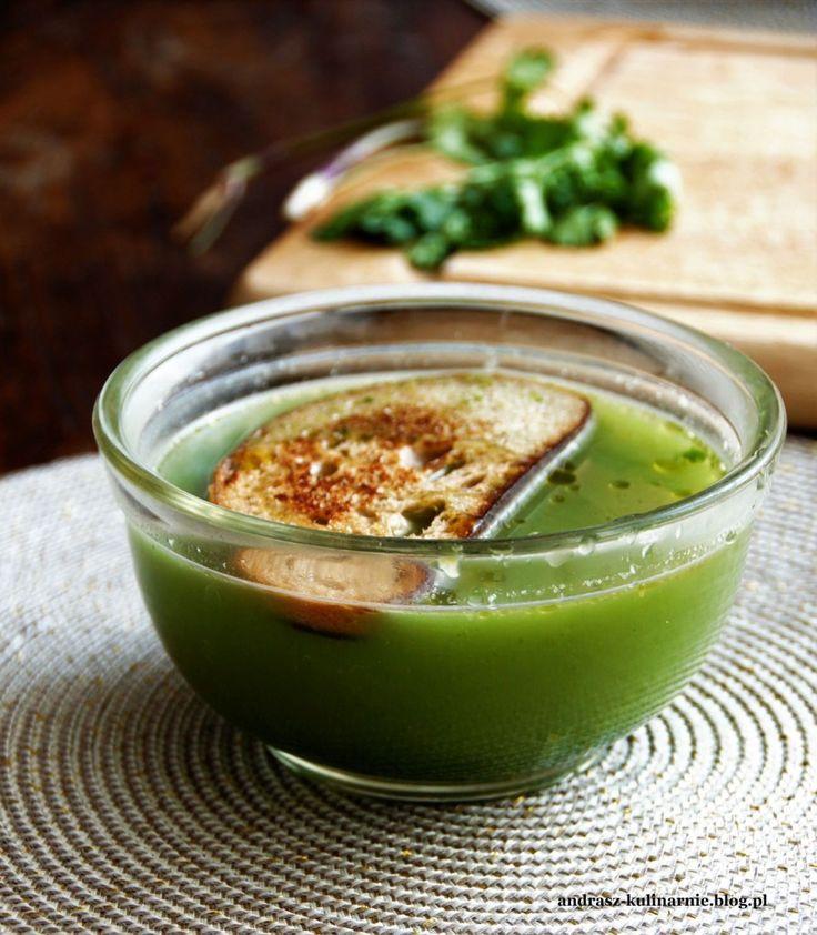 kolendra, zupa, sopa alentejana