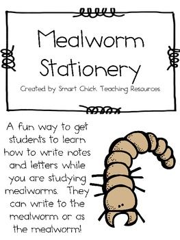 A Collection of Mealworm Stationery ~ Different Life Cycle Stages freee