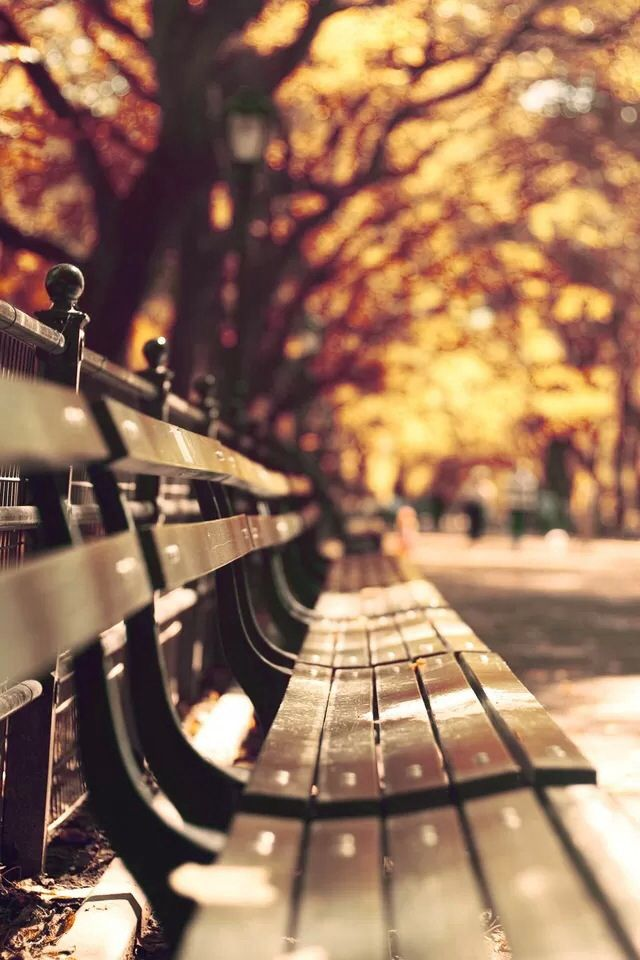Love Park Iphone Wallpaper : 476 best iPhone Backgrounds images on Pinterest Iphone ...