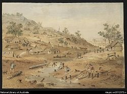 Diggings in the Mount Alexander district of Victoria in 1852