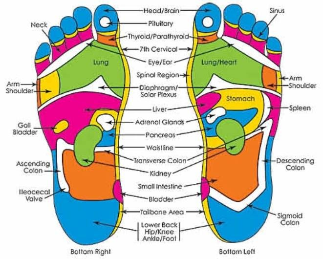 Foot Pressure Points Chart Keninamas