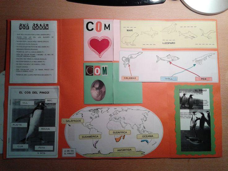 Projecte Pingüins. presentació en LAPBOOK 2