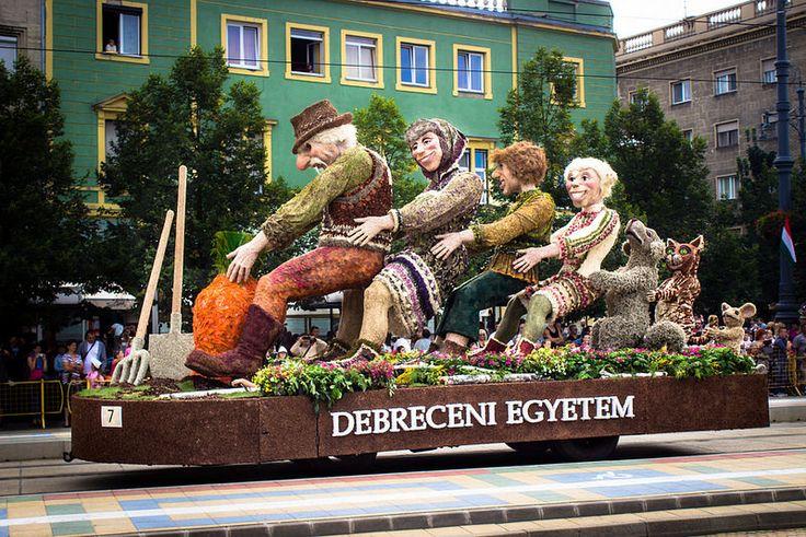 Debrecen Flower Carnival (2014.) - Debrecen, Hungary