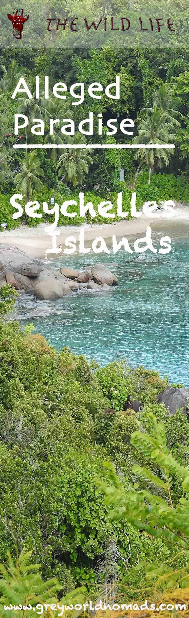 Seychelles Islands - The Pros And Cons Of Alleged Paradise | THE WILD LIFE  Seychelles Islands, is it paradise? How is snorkeling and diving really,  the infrastructure, costs of living and do they care for environment  and wildlife?  #seychelles #seychellestourism #islands