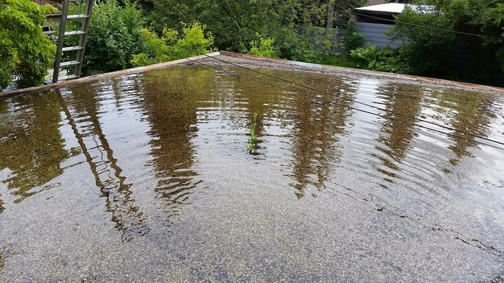 Roof Drainage Flat Roof Ponding Because Roof Drain Is