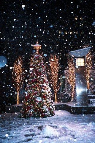 Snowy Christmas....