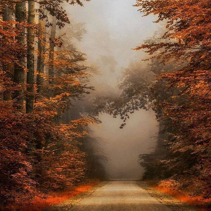 The road is foggy ahead